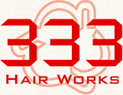 logo 333